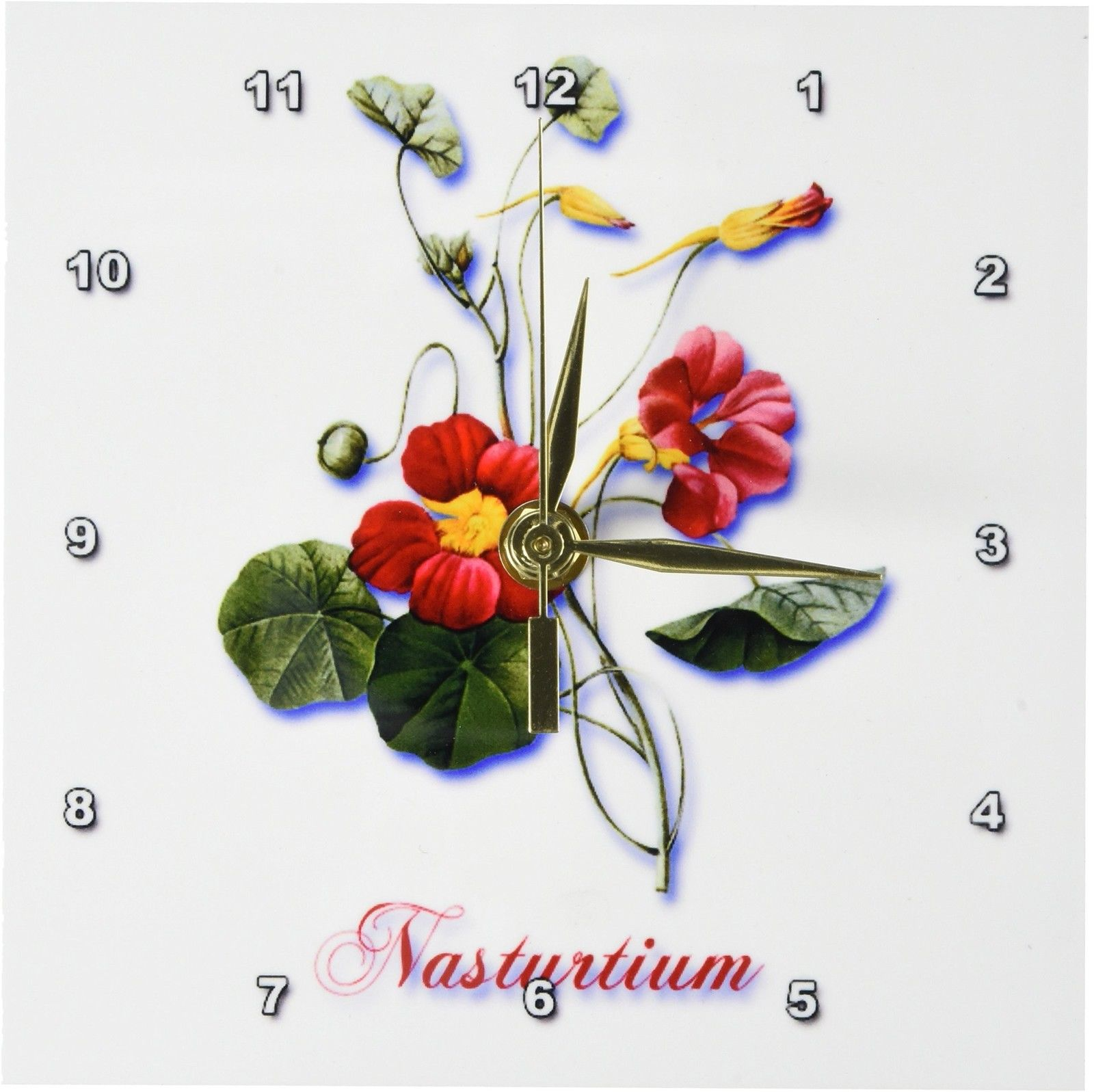 3dRose Beautiful Red and Yellow Nasturtium Botanical Print , Desk Clock, 6 by 6-inch by 3dRose