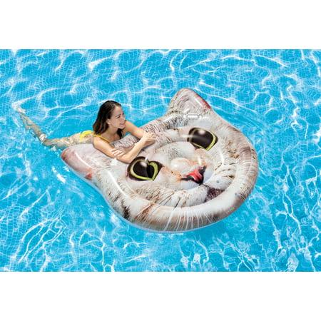 Cats Playing Pool - Intex Vinyl Cat Island Inflatable Pool Float
