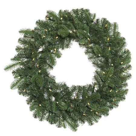 Vickerman G171625LED 24 in. Grand Noble Green Wreath with 50 Warm White Dura Light - image 1 de 1
