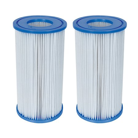 Coleman Type III A/C Swimming Pool Filter Pump Replacement Cartridge (2 Pack)