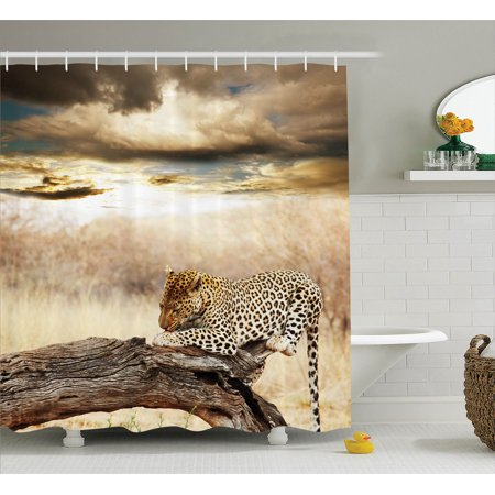 Safari Decor Shower Curtain Set, Leopard Resting Under Dramatic Cloudy Sky Africa Safari Wild Cats Nature Picture Print, Bathroom Accessories, 69W X 70L Inches, Beige Brown By Ambesonne