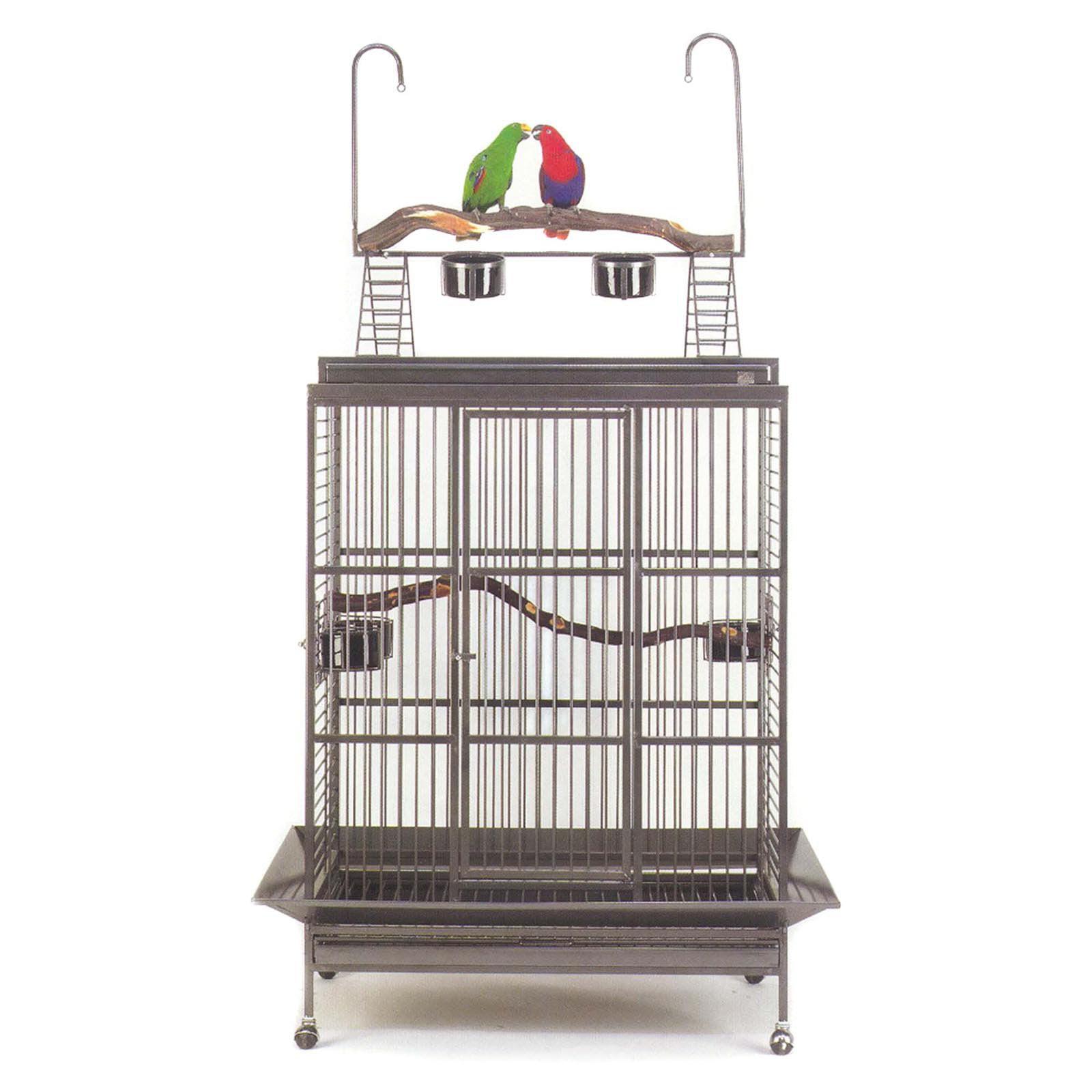 Avian Adventures Grande Playtop Bird Cage