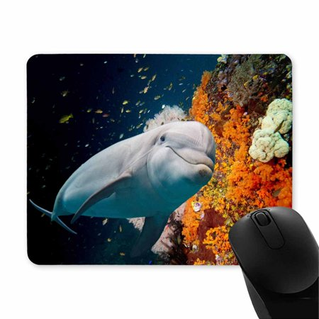 POP Dolphin Underwater on Reef Background Printed Mousepad Non Slip Rubber Gaming Mouse Pad 9x10 inch - image 1 of 2