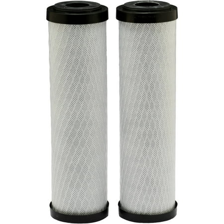 Whole House Water Filter Purifier (EcoPure EPW2C Carbon Whole House Replacement Water Filter (2 pack) )