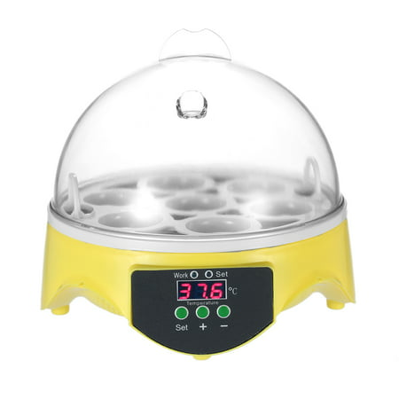 7 Eggs Mini Digital Egg Incubator Hatcher Transparent Eggs Hatching Machine Automatic Temperature Control for Chicken Duck Bird Eggs AC110V - image 1 of 7