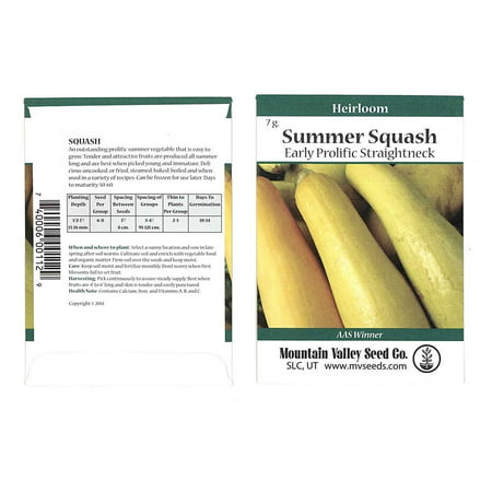 Early Prolific Straightneck Summer Squash Garden Seeds - 7 g Packet - Heirloom, Non-GMO - Vegetable Gardening Seed - Straight Neck Yellow Squash