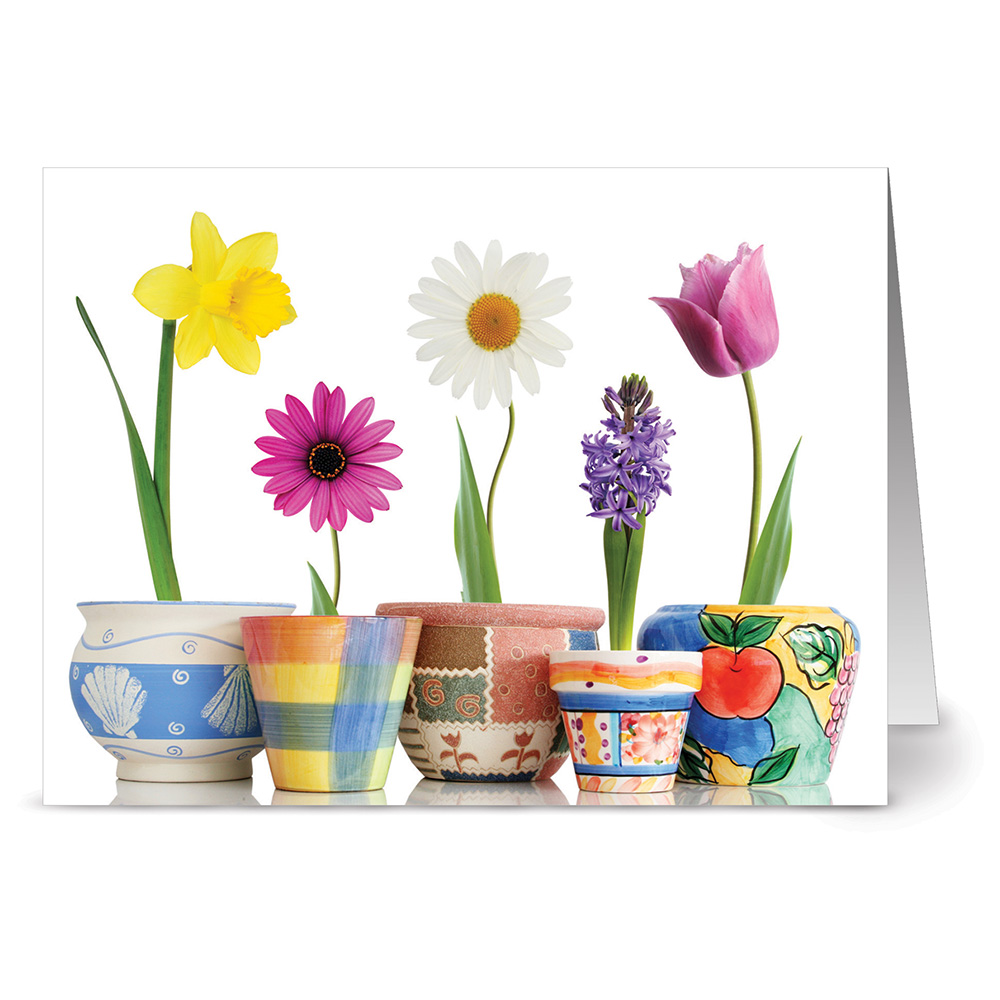24 Spring Note Cards - Bloom Where You're Planted - Blank Cards - White Envelopes Included
