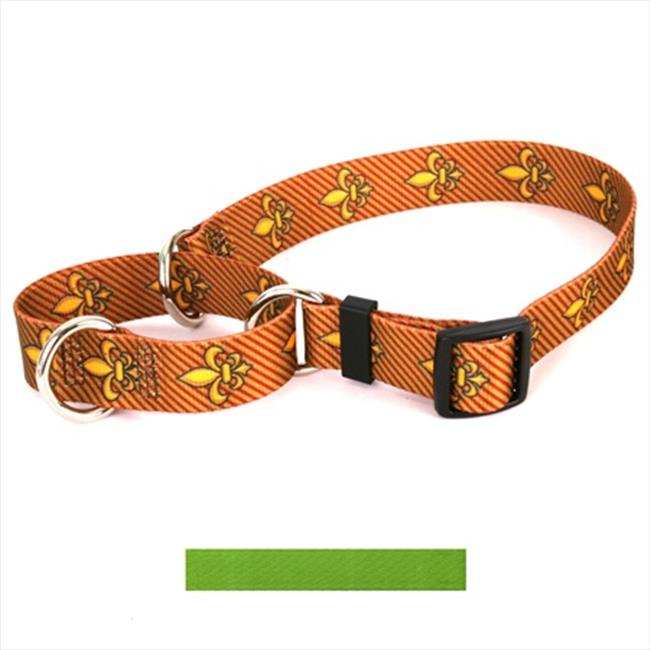 Yellow Dog Design M-SGR101S Solid Spring Green Martingale Collar - Small