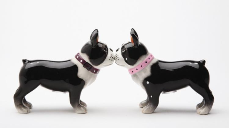 Magnetic Boston Terrier Pups Salt and Pepper Shaker Set by Pacific Trading