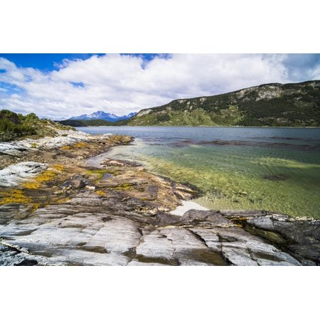 Tierra Del Fuego National Park (Tierra Del Fuego National Park, Ushuaia, Patagonia, Argentina, South America Print Wall Art By Matthew Williams-Ellis )