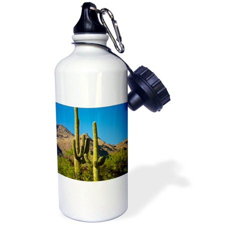 3dRose Saguaro, Sabino Canyon, Tucson, Arizona, USA, Sports Water Bottle, 21oz