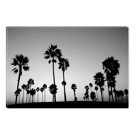 Startonight Canvas Wall Art Black and White Abstract Seagulls on the ...