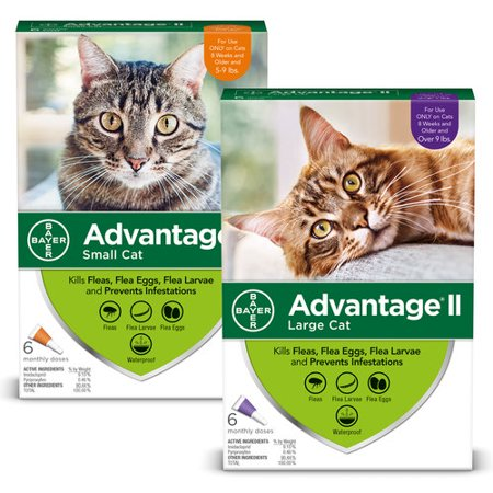 10% Off! Advantage II Flea Treatment for Cats Discount 2-Pack (Side Effects Of Advantage Multi For Cats)