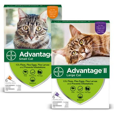 - 10% Off! Advantage II Flea Treatment for Cats Discount 2-Pack Bundle
