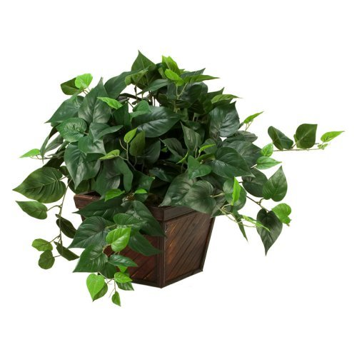 D&W Silks Philo Ivy in Square Bamboo Planter