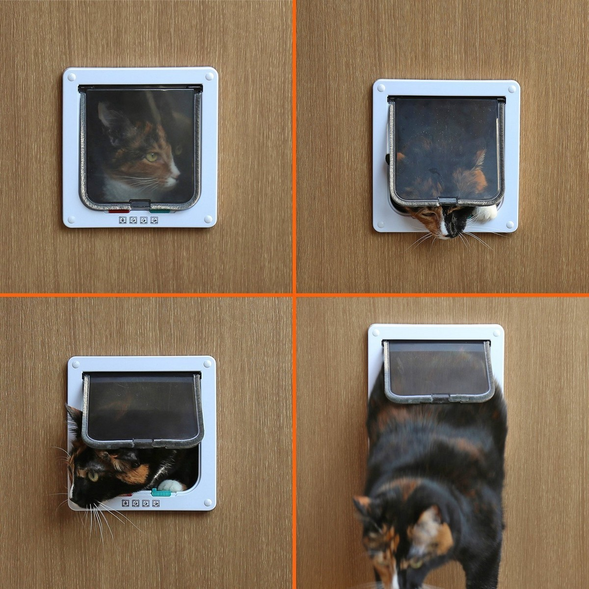 Cat Door 4 Way Locking Flap Pet Kitten Small Dog Door