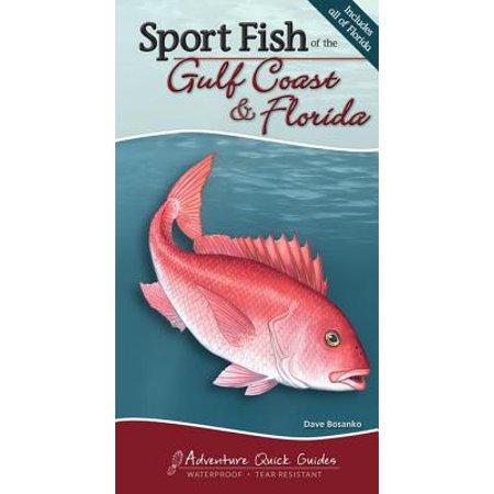 Sport Fish of the Gulf Coast & Florida - eBook
