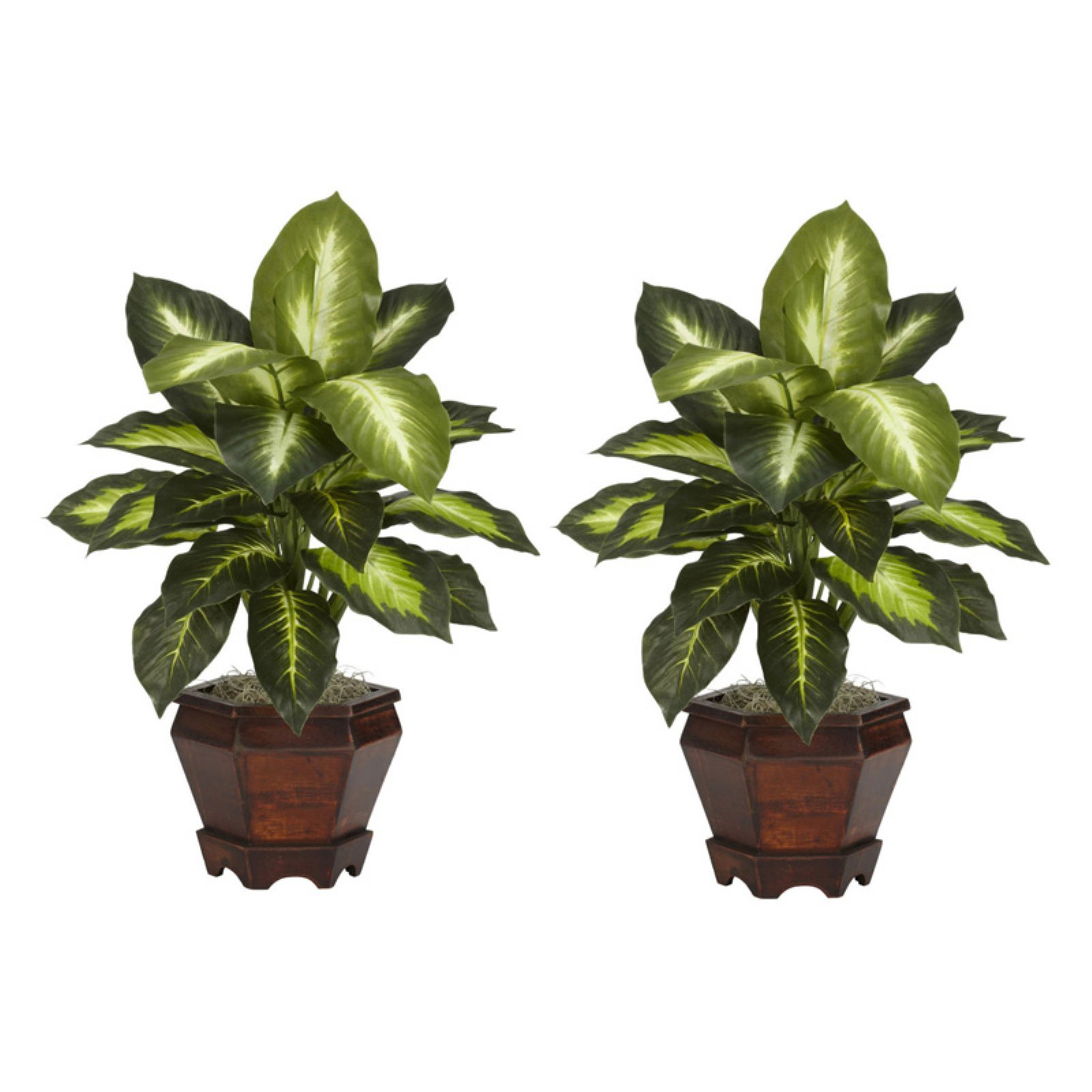 Dieffenbachia Silk Plant with Wood Vase, Golden, 2pc