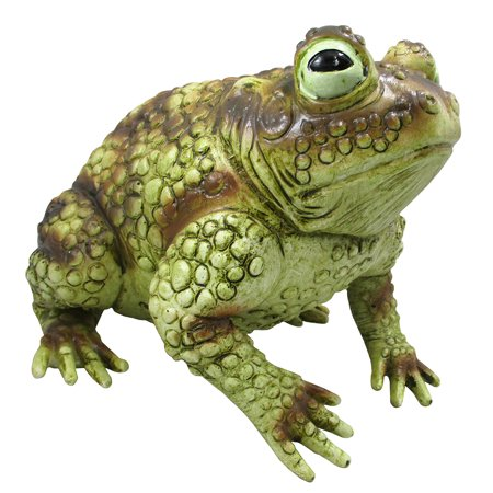 Easy Big Halloween Decorations (Giant Rubber Frog Toad Prop Decoration, Multi, 10 Inches)