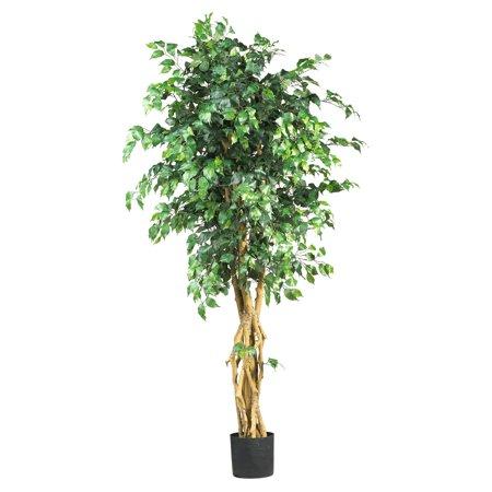 6ft Palace Style Ficus Silk Tree