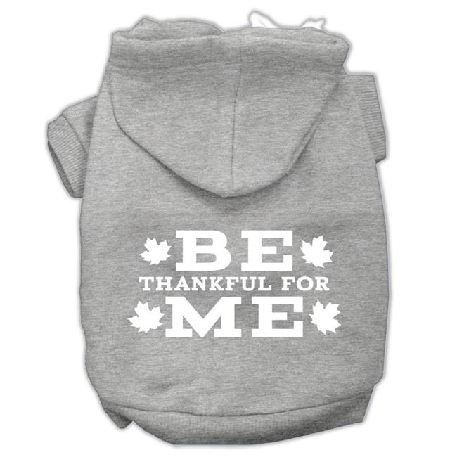 Be Thankful For Me Screen Print Pet Hoodies Grey Size S (10) - image 1 of 1