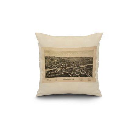 Carthage New York Panoramic Map 18x18 Spun Polyester Pillow White Bord
