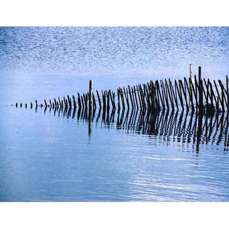 Wired Wooden Fence (Framed Art For Your Wall Fence Wooden Water Fencing Wire Wood Posts 10x13 Frame )