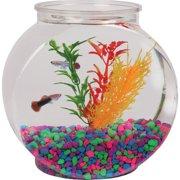 """Hawkeye 1/2 Gallon Fish Bowl, Drum Shaped, Shatterproof Plastic 6.3"""" L x 4.2"""" W x 6.3"""" H"""