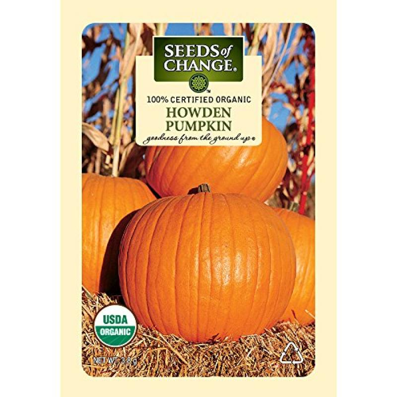 Seeds of Change Certified Organic Pumpkin, Howden - 3.8 grams, 20 Seeds Pack