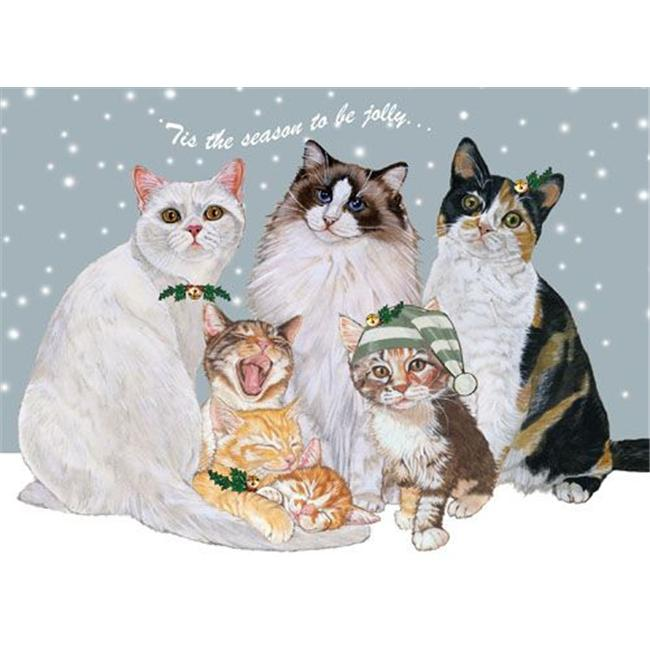 Pipsqueak Productions C529 Cat Holiday Boxed Cards