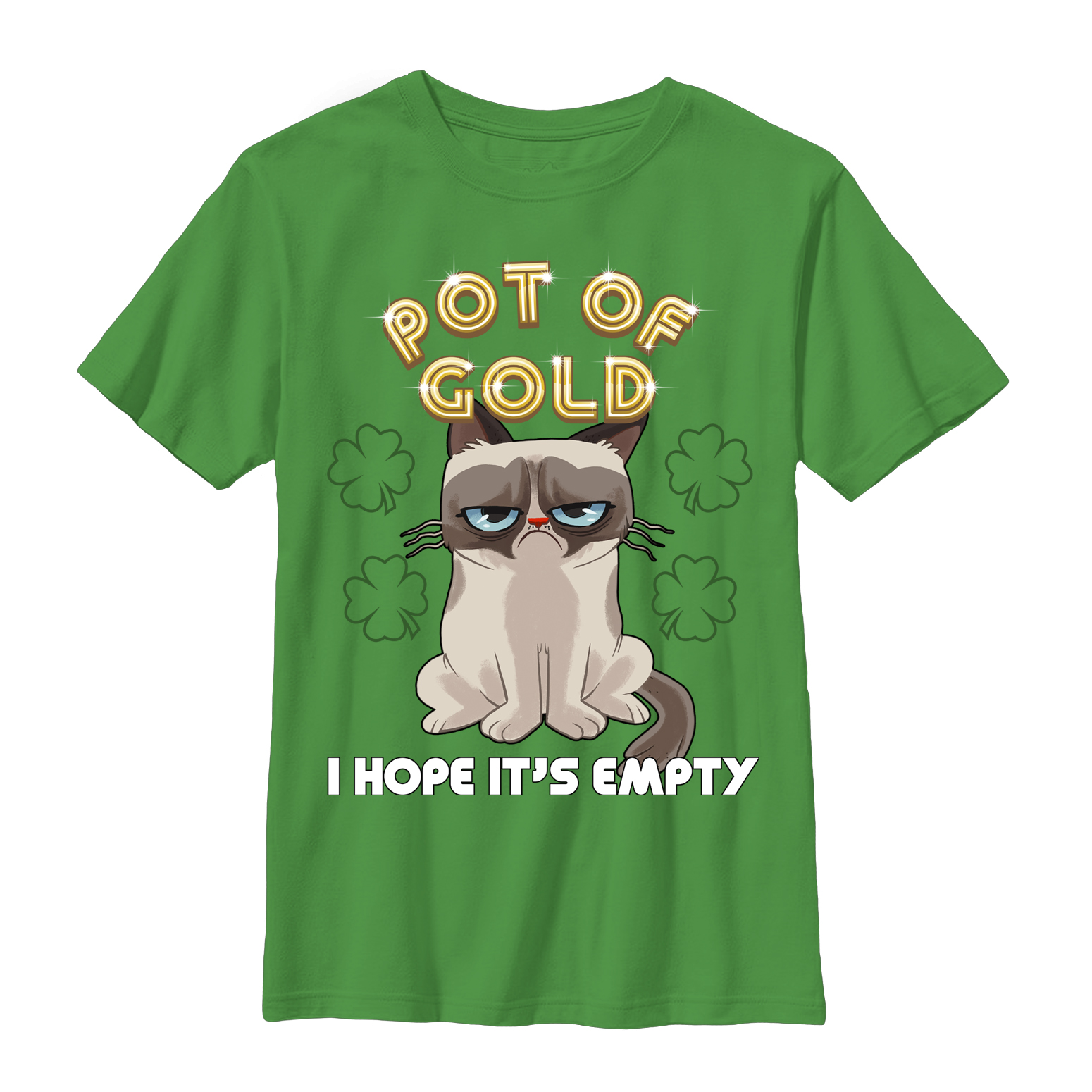 Grumpy Cat Boys' Empty Pot of Gold T-Shirt