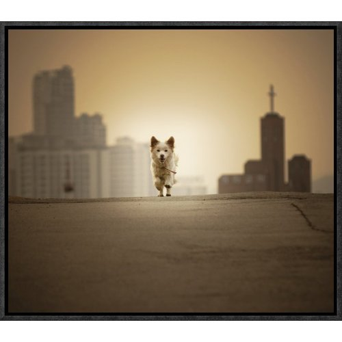 Global Gallery 'Be with You' by Biduri Chang-Hwan Park Framed Photographic Print