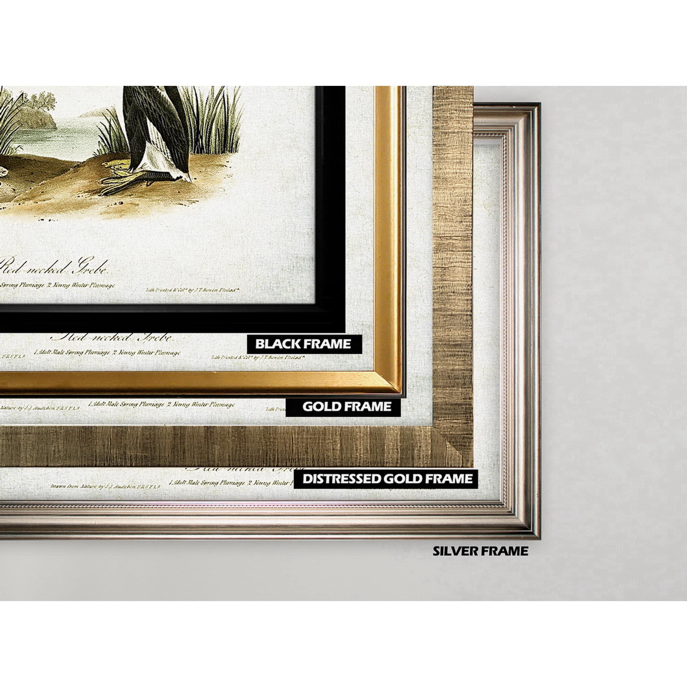 Wexford Home Aviary Sketch XXV - Gold Frame - Walmart.com