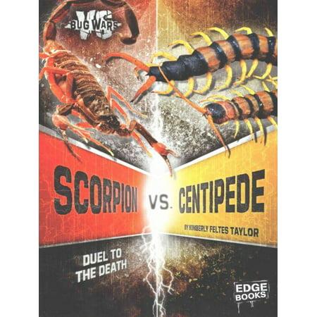 Scorpion vs  Centipede : Duel to the Death