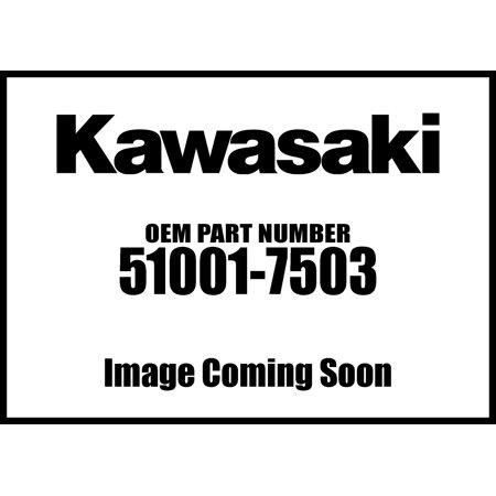Kawasaki 2005-2006 Mule 3010 Trans4x4 Fuel Comp Tank 51001