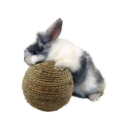 Lavaport 6/10cm Pet Chew Grass Ball for Rabbit Hamster Guinea Pig Rat Toys - Guinea Pig Halloween Cage
