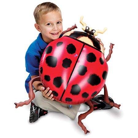 Learning Resources Giant Inflatable Insects, Set of 5