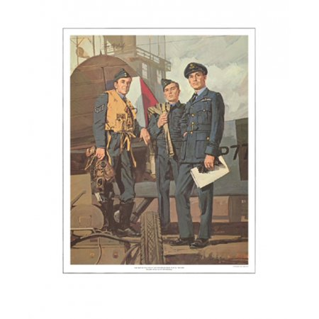 The Royal Canadian Air Force  Wwii 1939 1945  Poster Print By Tom Mcneely  16 X 20