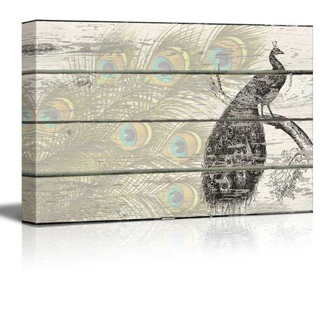 Wall26 - Lithographic Peacock with Feathers Artwork - Rustic Canvas Wall Art Home Decor - 12x18 inches](Feather Wall Art)