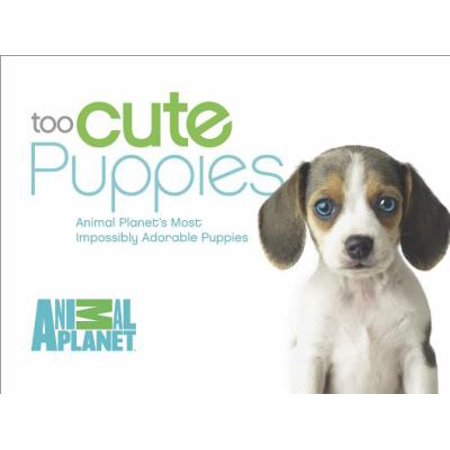 Too Cute Puppies  Animal Planets Most Impossibly Adorable Puppies