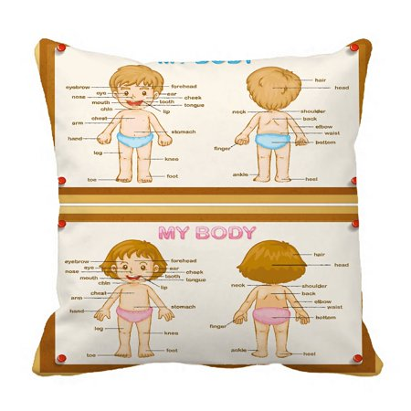 PHFZK Educational Pillow Case, Diagram of Human Parts with Boy and Girl Pillowcase Throw Pillow Cushion Cover Two Sides Size 20x20