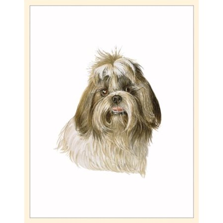 - Fiddler's Elbow Shih Tzu Blank Box Note Card, Magnetic insert to keep shakers together By Fiddlers Elbow