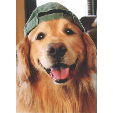 Avanti Press Golden Retriever Baseball Cap Deluxe Matte Dog Blank Note Card Boxer Dog Note Card