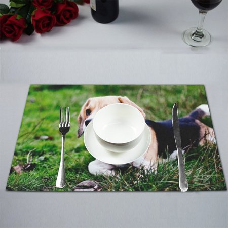 MYPOP Beagle Hunting Dog Table Placemat Food Mat 12x18 (Best Food For Beagles)