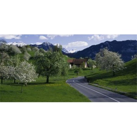 Switzerland  Luzern  trees  road Poster Print by  - 36 x 12 - image 1 of 1