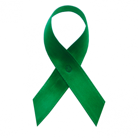 Emerald Green Satin Awareness Ribbons - Bag of 250 Fabric Ribbons w/ Safety Pins - Sids Awareness Ribbon