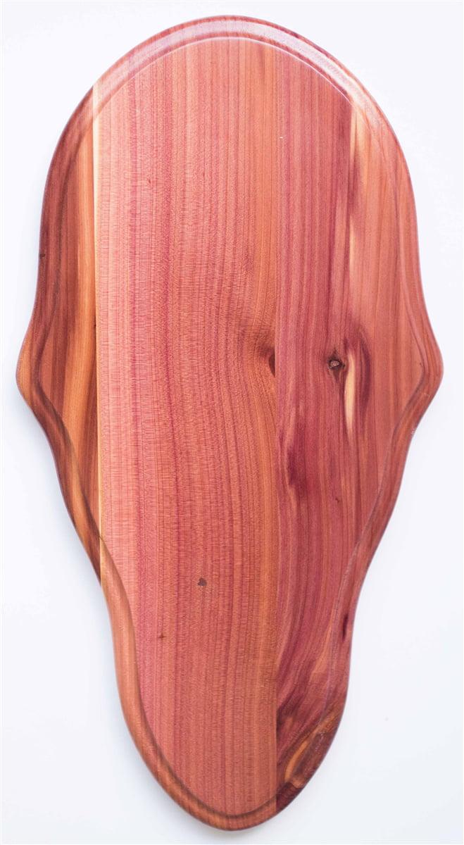 Cedar Deer European Skull Mount Plaque by