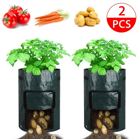 Tsv 2pack 10 Gallon Garden Potato Grow Bags Vegetables Plant Growing Durable Planter Upgraded Pe Aeration Pots With Portable Access Flap