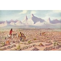 Mystic Maze of the Mojave Indians, Near Needles, California Print Wall Art