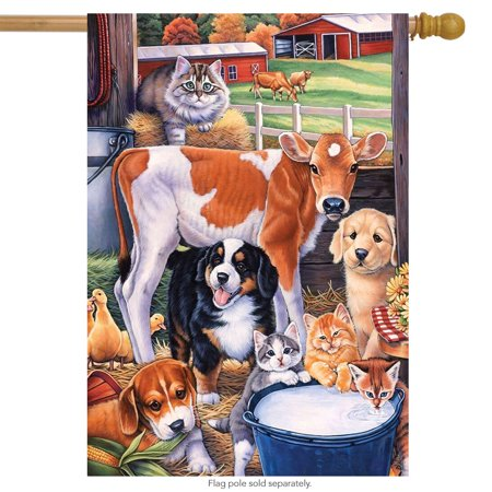 Animals in the Barn Spring House Flag Cats Dogs Cows Horse 28